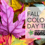 2016 Guide to Fall Color Day Trips