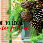 Guide To Local Winter Festivals