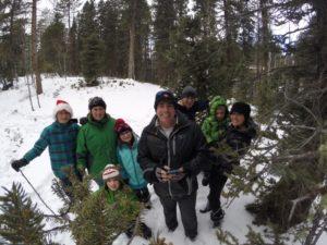 Christmas Tree Tradition