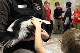 Cheyenne Mountain Zoo Birthday Party