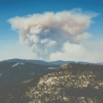 Wildfires and our Community: How to Help!