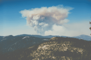 How to help with wildfires