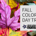 2018 Guide to Fall Color Day Trips