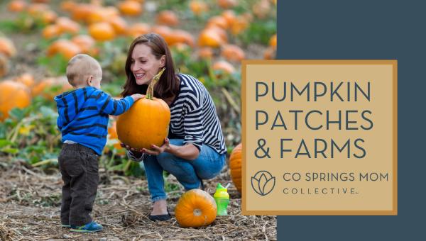 Pumpkin Patches 2021